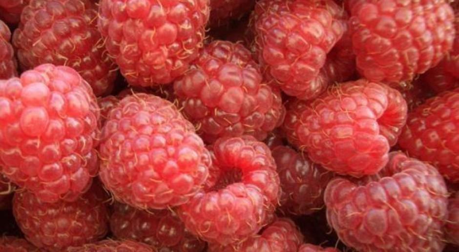 Zastrzeżenia do jakości polskich owoców i warzyw