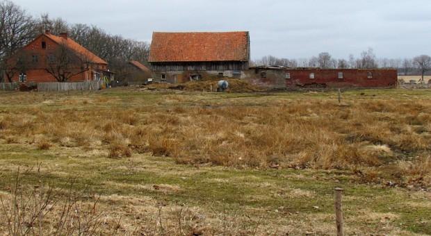 Wieś jest biedna i rozkradana