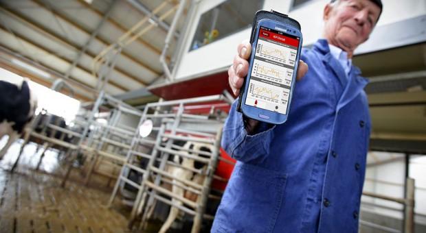 Zarządzanie ze smartfona bydłem mlecznym