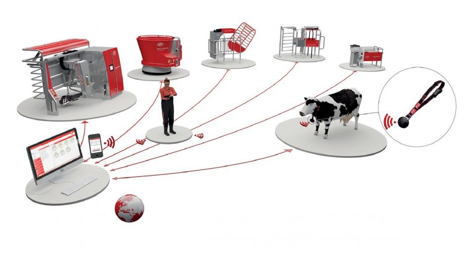 Żółta Rewolucja Lely 2013 - zarządzanie stadem bydła mlecznego