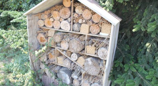 Powstało 100 hoteli dla pszczół