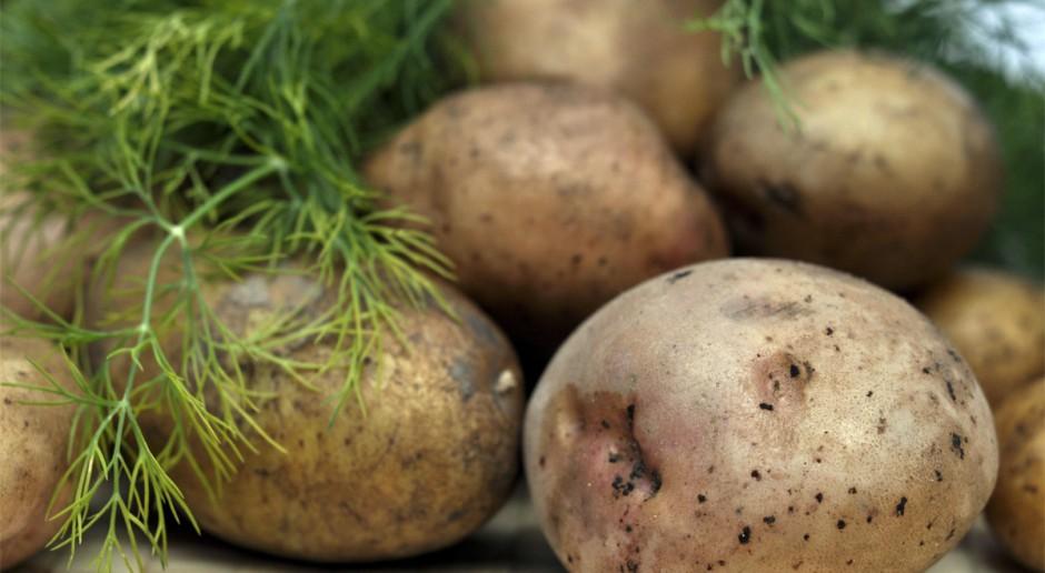 IERiGŻ: Ziemniaki mogą drożeć