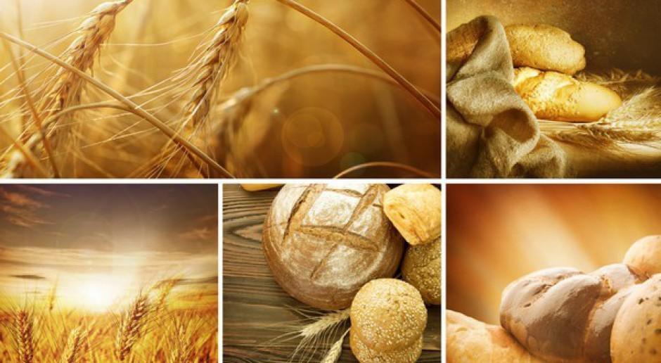 Ustabilizowane ceny zbóż