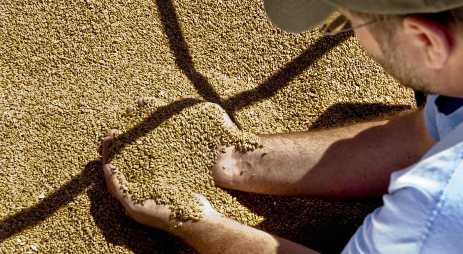 """Dobre informacje ze Wschodu """"trzymają"""" ceny zbóż"""