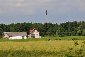 Prawie 22 tys. zł za hektar państwowej ziemi