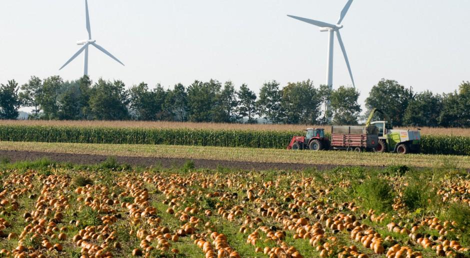 Wytwarzasz energię z OZE lub biogazu rolniczego pójdziesz na aukcję