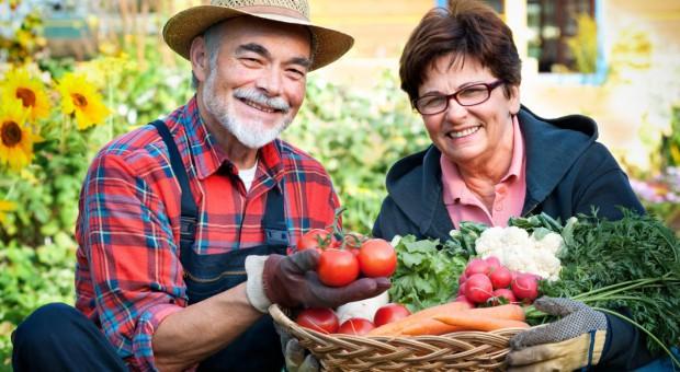 Polska 6. producentem żywności w UE