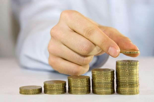 ARiMR rozpoczęła wypłatę dopłat bezpośrednich za 2013 r.