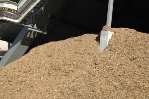 Biomasa zamiast węgla