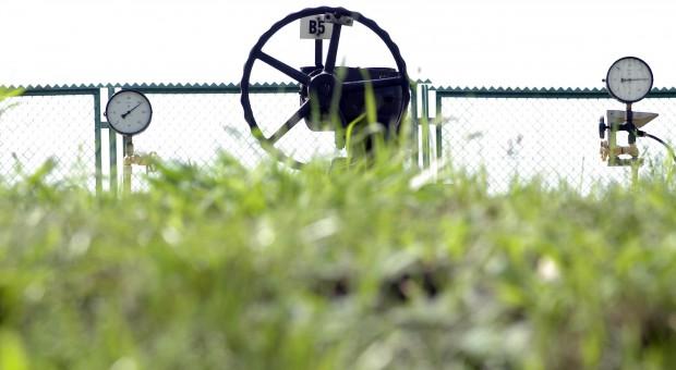 Kombinat Rolny Kietrz ma stadninę i gazociąg