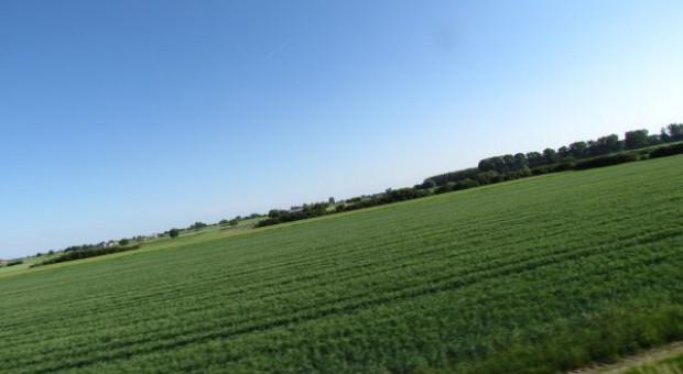 SN o odszkodowaniach za grunty rolne wywłaszczone w czasach PRL