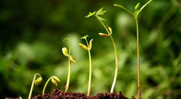 Rolnicy zaangażowani w badania i rozwój