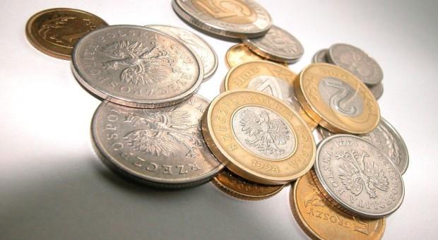 Budżet COBORU na 2013 r. zmieniony