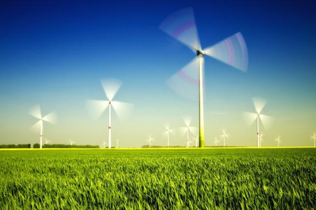 Chiński bank chce wspierać polską zieloną energetykę