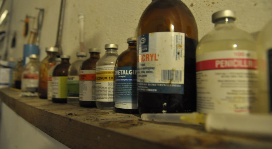Duńczycy ograniczyli stosowanie antybiotyków