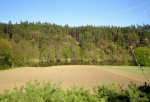 Postępująca degradacja gleb UE