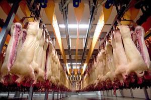 Ważna jest solidarność UE ws. rosyjskiego embarga na mięso