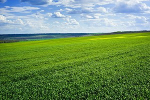 ANR: mniej bezprawnie użytkowanych gruntów