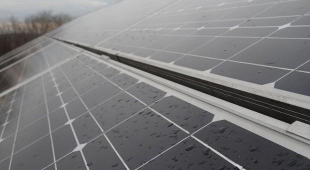 Czesi zbudują elektrownię słoneczną pod Olsztynem
