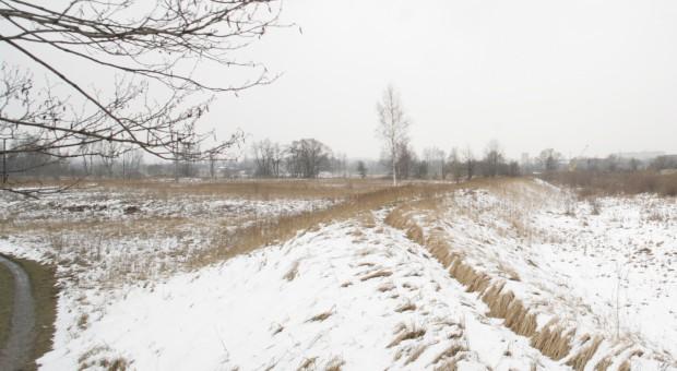Agencja zarabia na głodzie ziemi na Opolszczyźnie