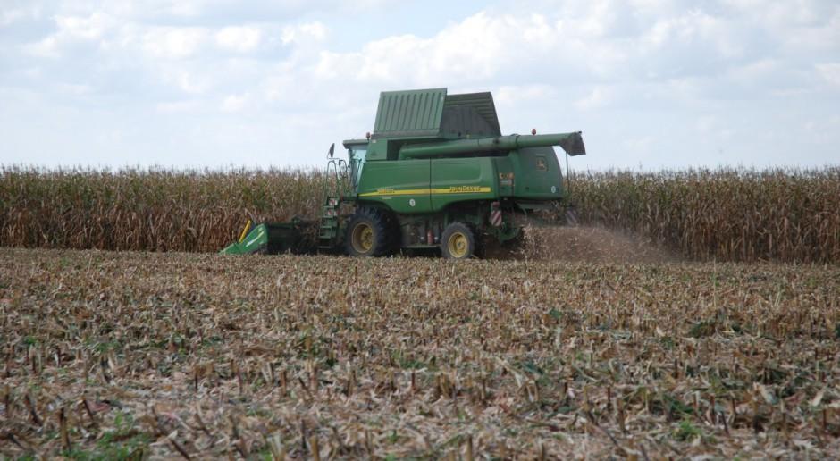 Powierzchnia upraw GMO rośnie ale niezbyt szybko