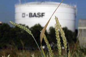 BASF poprawia wyniki