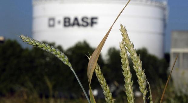 BASF zwiększa sprzedaż i liczy na dobry rok