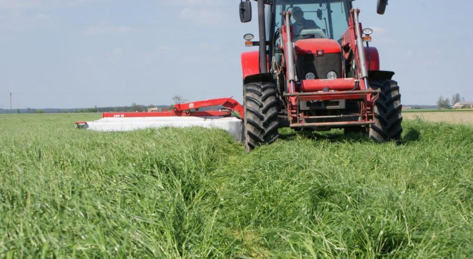 Nowe mieszanki traw i lucerny od Barenbrug