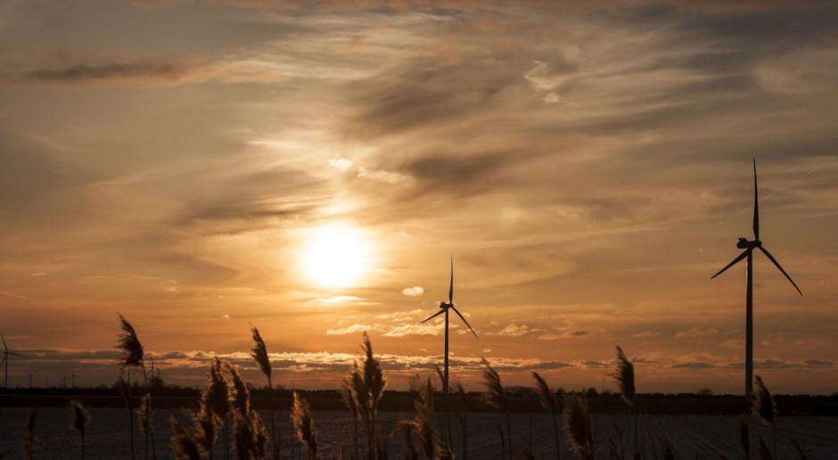 W Polsce wiatrak nie szkodzi