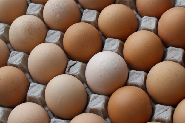 Złote jaja polskiego eksportu