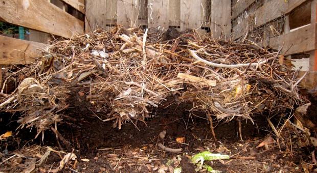 Kompost - skarb ogrodnika