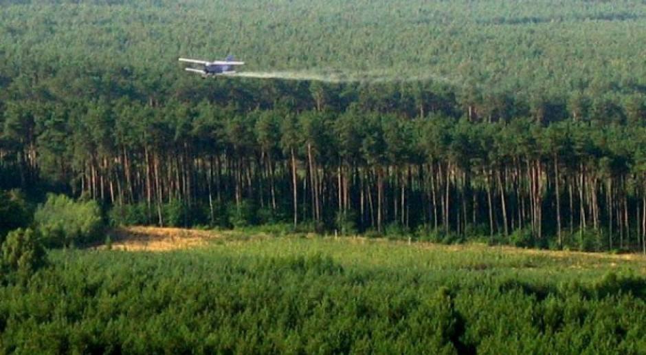 Leśnicy rozpoczęli opryski przeciw szkodnikom