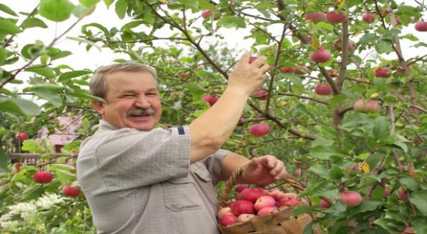 W nowym PROW mniej dla sadownikow