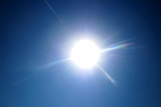 Magnez chroni rośliny przed poparzeniami słonecznymi