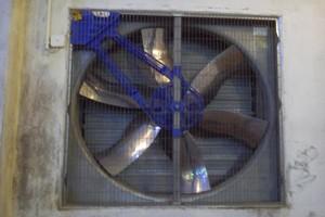 Optymalna wilgotność w kurniku