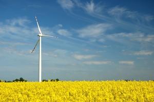 Uczelnia zbada sposoby stosowania odnawialnych źródeł energii