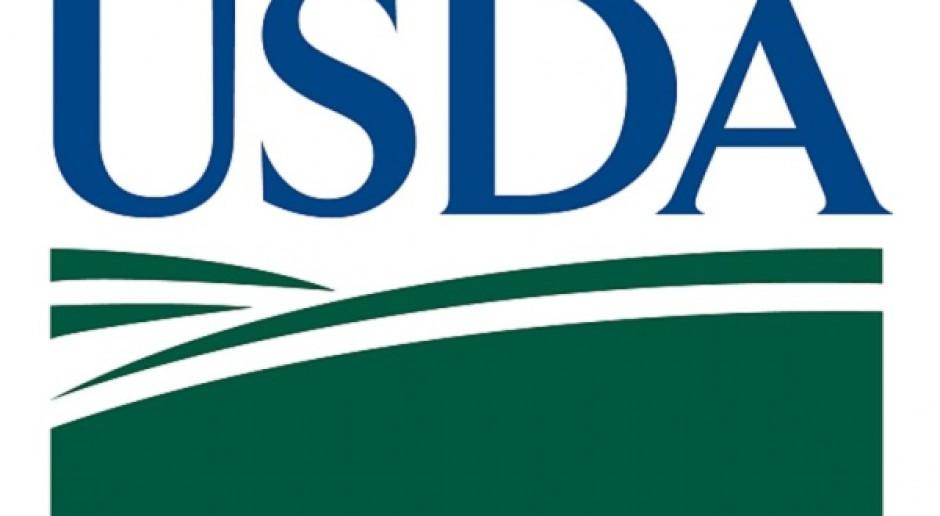 Zboża tanieją po raporcie USDA