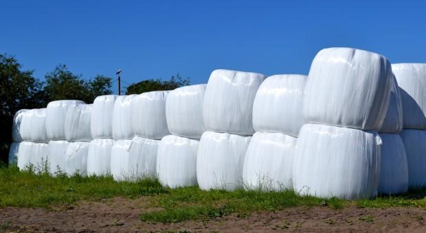 Susza generuje wzrost cen sianokiszonki