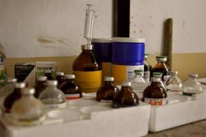 Fracuzi chcą ograniczyć stosowanie antybiotyków w produkcji zwierzęcej