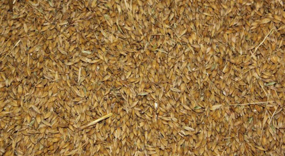 Ceny zbóż wzrosły