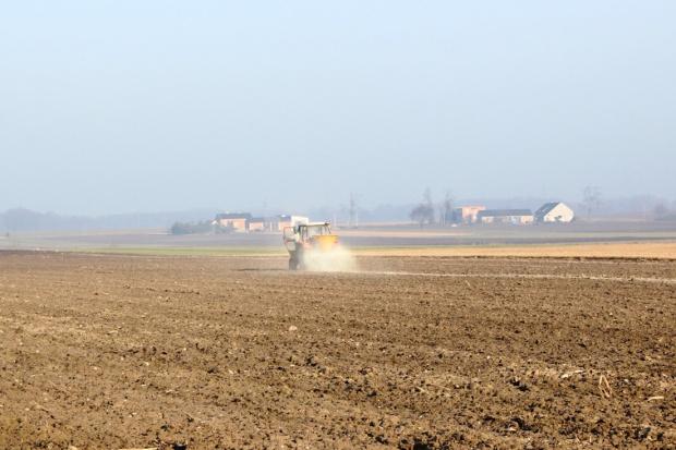 Czy warto wapnować glebę?