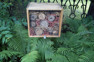 Jak zwabić do ogrodu pszczoły?