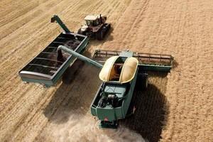 Brak czynników sprzyjających wzrostowi cen zbóż i rzepaku