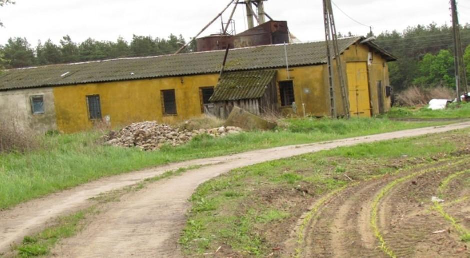 Potrzebny program elektryfikacji wsi