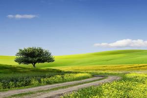 20 mln zł dotacji na drogi dojazdowe do gruntów rolnych