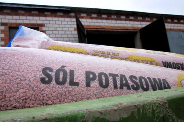 Fosfor i potas pod rzepak