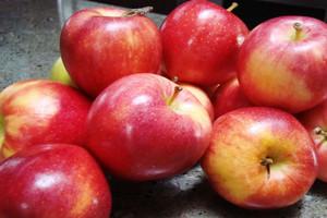 MG: eksport polskiej żywności mogą wesprzeć zagraniczni pośrednicy