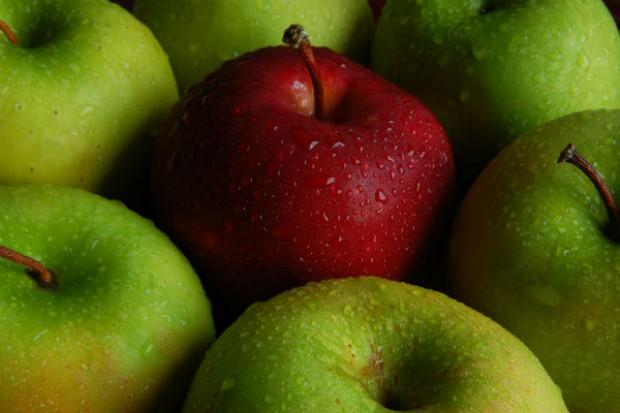 Cydr i owoce dla szkół tematem spotkania zespołu ds. embarga