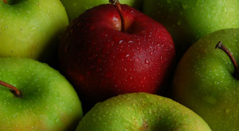 Polskie jabłka przed kanadyjską szansą