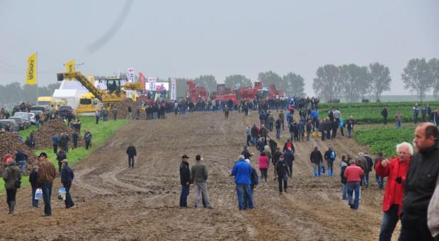 Beet Europe w Polsce